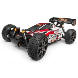 trophy buggy flux hpi